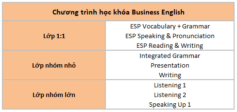 chuong-trinh-hoc-business-english-ev-academy